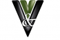 Vision y Valor Consulting